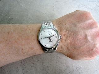JLC DualTime Wrist